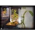 Fantastic Beasts - Magical Creatures Bowtruckle / Pickett