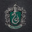 Harry Potter - Slytherin Sweater / Trui