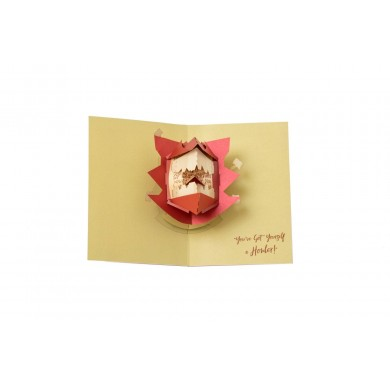 Harry Potter - Howler 3D Pop-Up Greeting Card